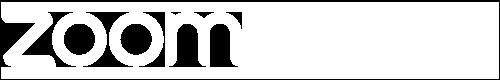 BCG Zoom Logo