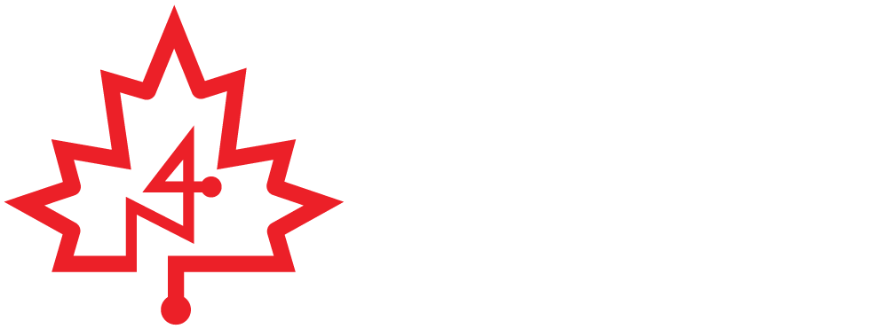 N4 - NATIONAL NEWCOMER NAVIGATION NETWORK