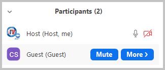 Mute participant sound button