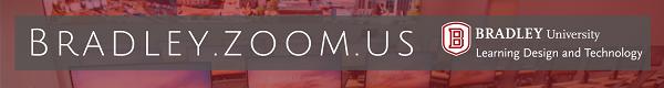Bradley Zoom Logo