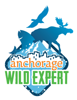 Anchorage Wild Expert (AWE)
