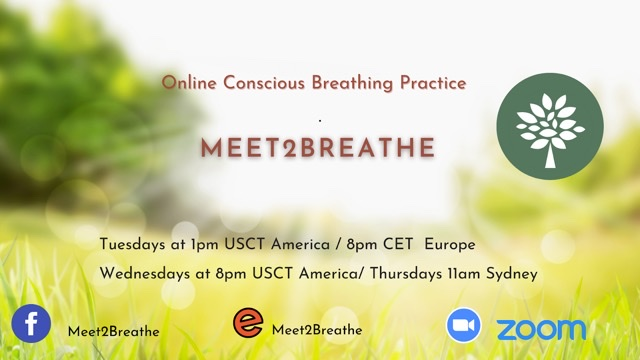 Online Conscious Breathing Practice with a group of professional breathworkers.