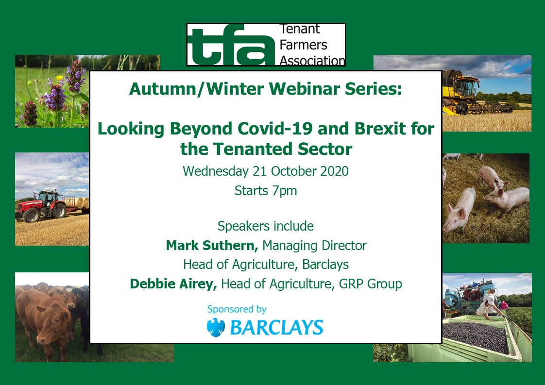 Autumn/Winter Webinar Series:  Looking Beyond Covid-19 and Brexit for the Tenanted Sector on Wednesday 21 October 2020, starting 7pm